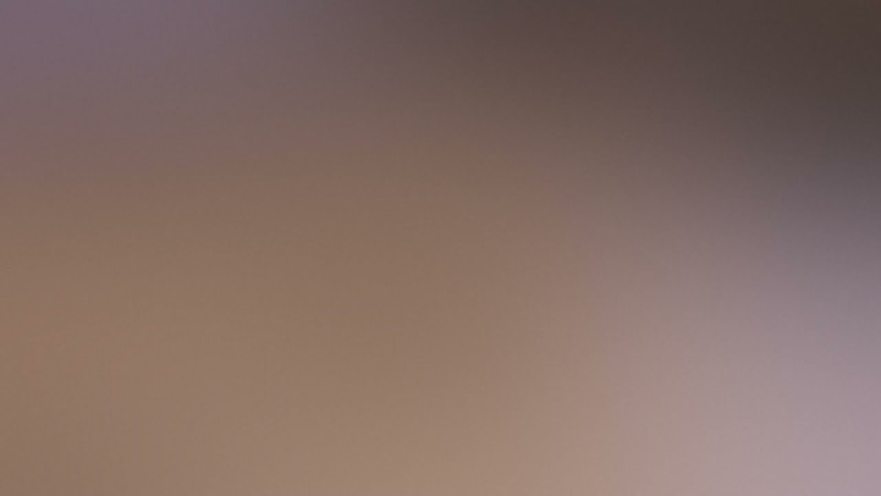 Download S the Monkey (1994) Movie Explained in Hindi   AFFAIR TV