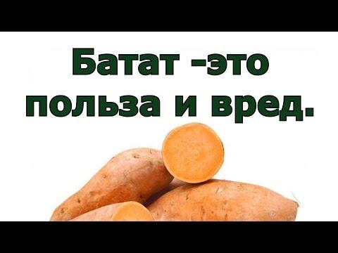 Батат  - что это, а также польза и вред сладкого картофеля.