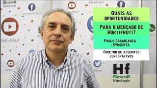 HF Brasil Entrevista - Pablo Casablanca