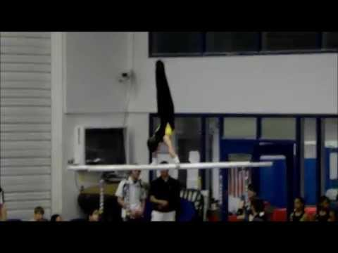 2014 Georgia Men's Gymnastics State Championship