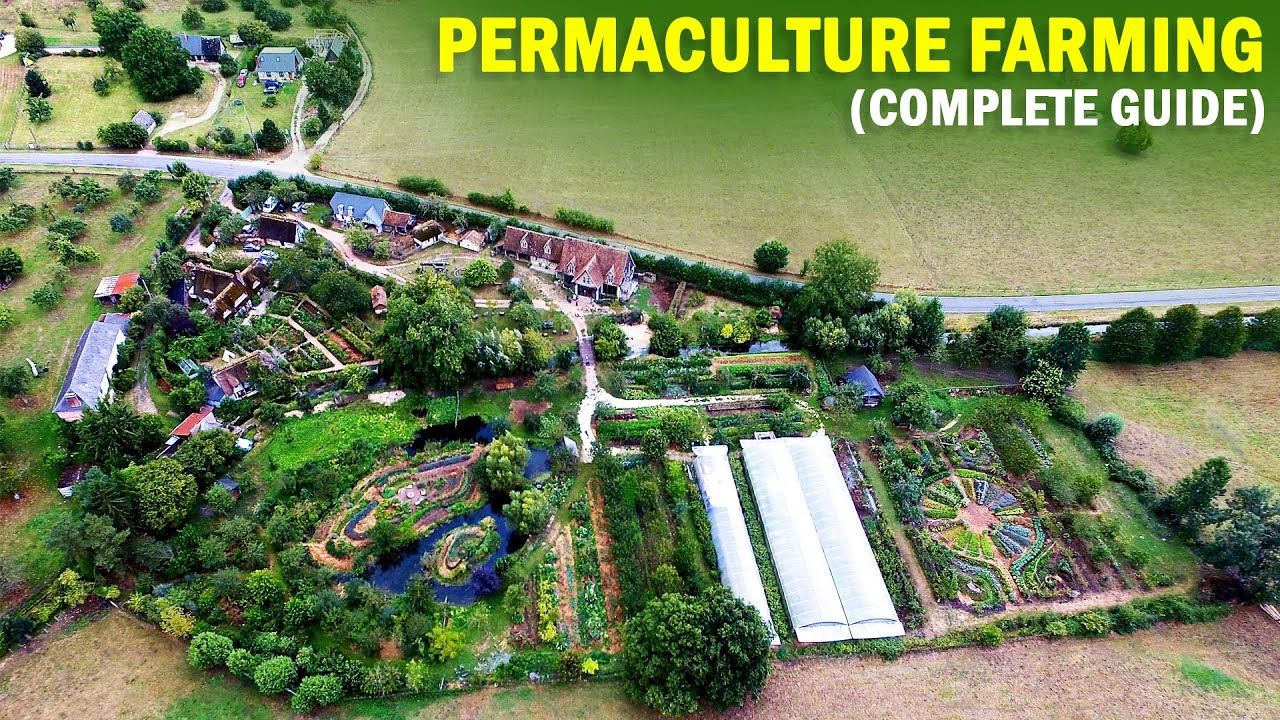 Permaculture Farming (Permanent Agriculture) | Complete Guide | Permaculture Design