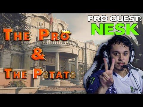 The Pro & The Potato || Nesk || Alpha Ash Main