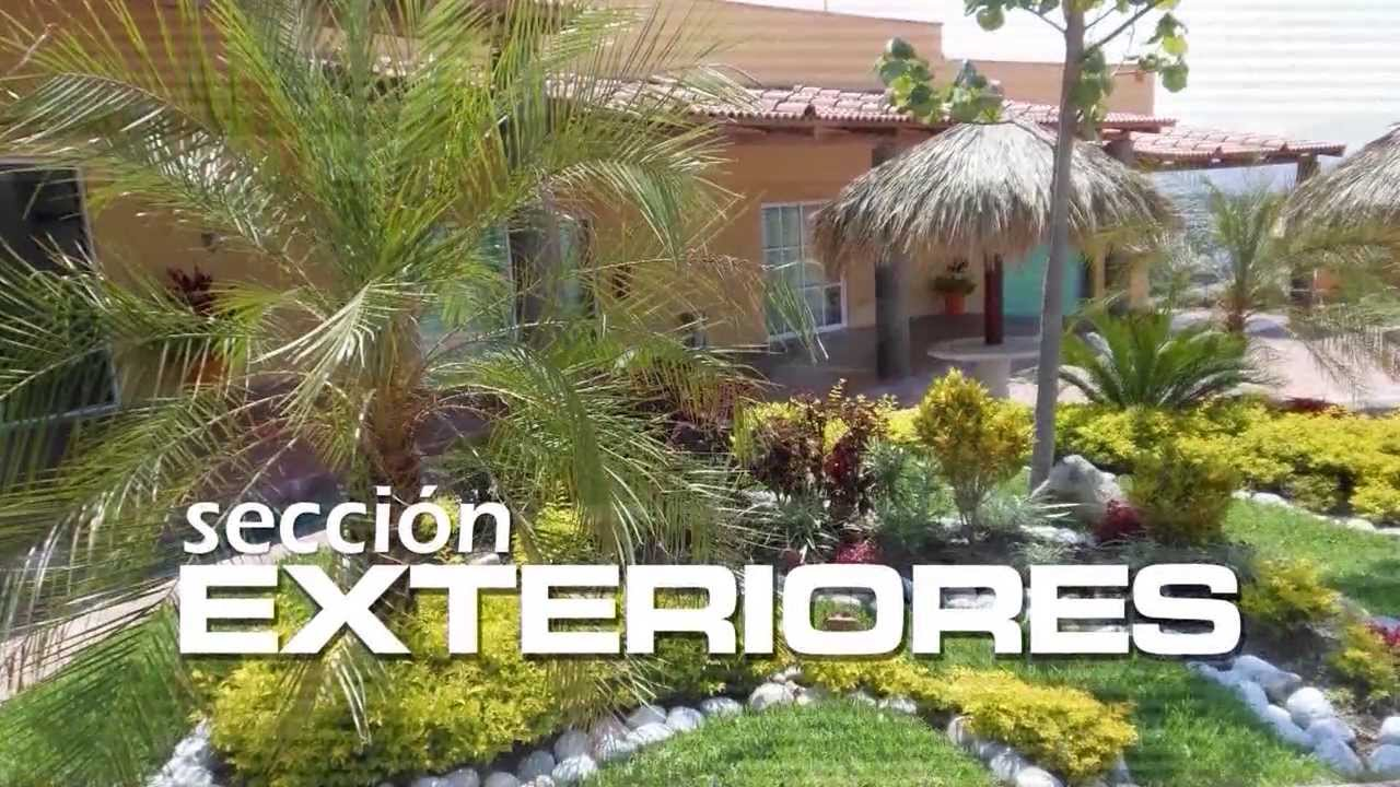 Vivero alegr a riego y cuidado de plantas youtube - Alegria planta cuidados ...