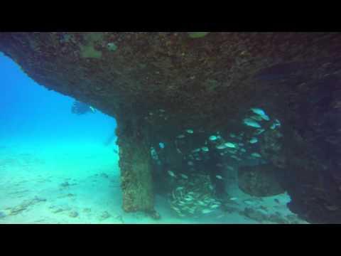 Barbados' Carlisle Bay Marine Park