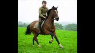 otto brandenburg to kammerater til hest