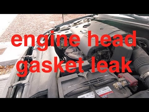 Let's TEST it – Blue Devil Head Gasket Sealer NISSAN Altima √ Fix it Angel