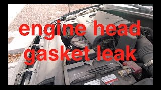 Let's TEST it - Blue Devil Head Gasket Sealer NISSAN Altima √ Fix it Angel