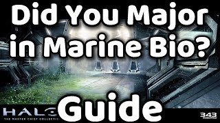 Halo MCC - Did You Major in Marine Bio? - Achievement Guide