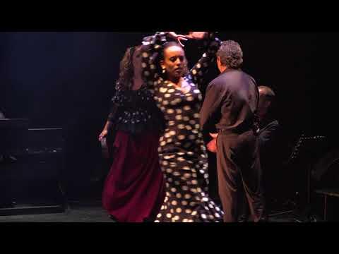 Teaser Carmen Flamenco