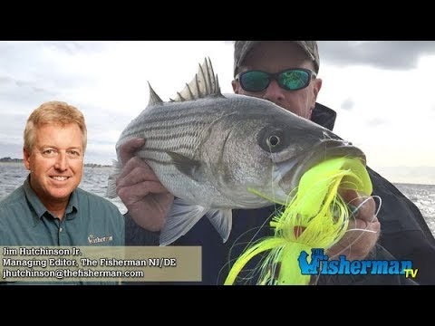 December 7, 2017 New Jersey/Delaware Bay Fishing Report with Jim Hutchinson, Jr.