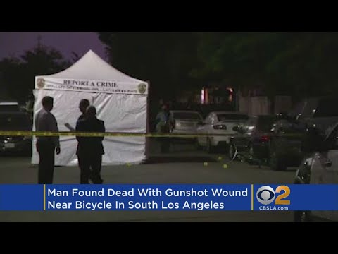 Man Shot To Death In South LA; Bike Found Nearby