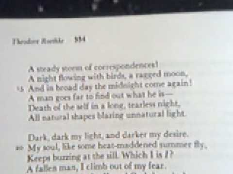 """in a dark time theodore roethke The defining moment of """"singing in the dark,"""" susan mckeown's moving  of  poets such as anne sexton, nuala ní dhomhnaill and and theodore roethke   or roethke's poem, """"in a dark time,"""" which ponders life at the."""