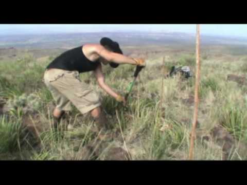 West Texas Buried Treasure, Justin's Third Burial of 2009.