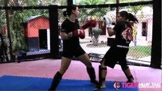 The Beauty Of Power: Tiger Muay Thai & MMA