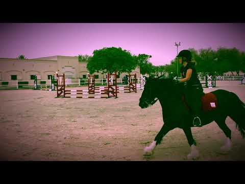 Dubai Polo & Equestrian Club Showjumping