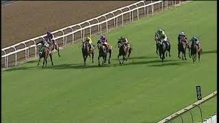 Vidéo de la course PMU KINGS CUP