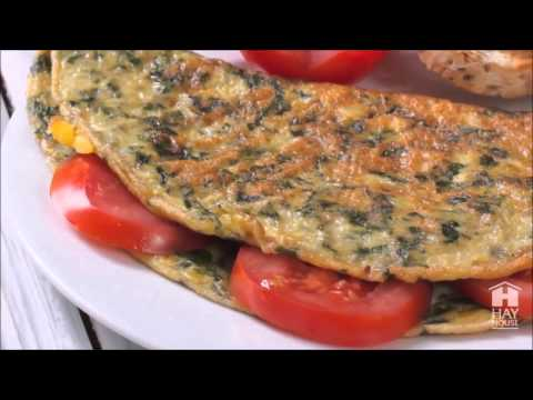 Joan Borysenko - Day in the Life of the PlantPlus Diet