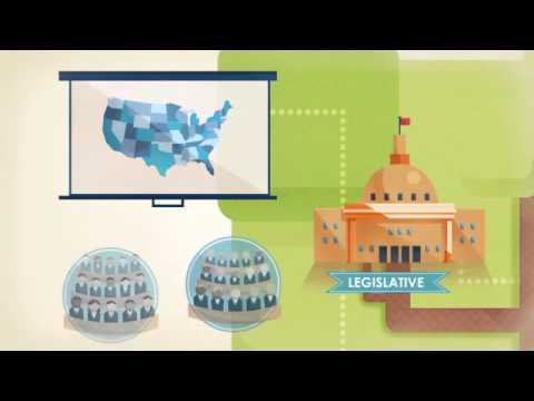 FLVS Civics: Foundations - The Branches of Government
