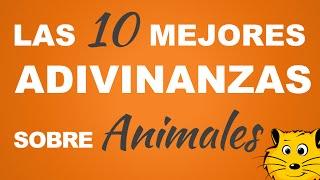 Las 10 mejores ADIVINANZAS de Animales