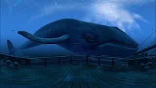 Большой синий кит 3D 360° 4K VR видео для очков виртуальной реальности 360 TB