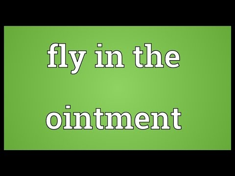 Fly in the ointment Meaning