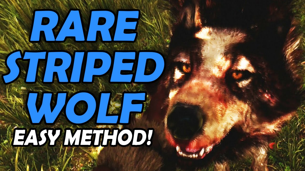 Far Cry Primal | Rare Striped Wolf Easy Method (Normal Mode)