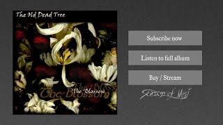 Watch Old Dead Tree The Dark Missionary video