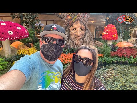 Las Vegas Vlog Day 2! Primrose Breakfast,Ceasars Palace Forum Shops+Bellagio Conservatory Fall 2020!