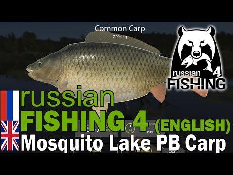 Russian Fishing 4 ENGLISH Highlight - Mosquito Lake Common Carp 7KG