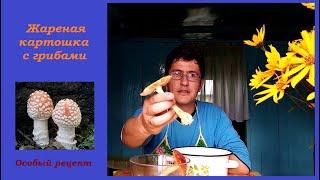 Жареная картошка с мухоморами