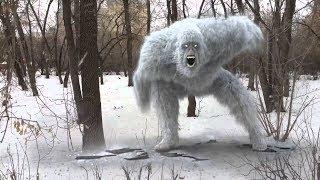3 реальных видео со снежным человеком