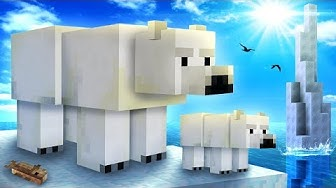Everything You Need To Know About POLAR BEARS In Minecraft!