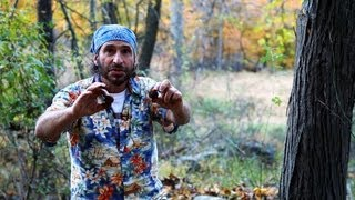How to Forage for Food in the Autumn | Survival Skills
