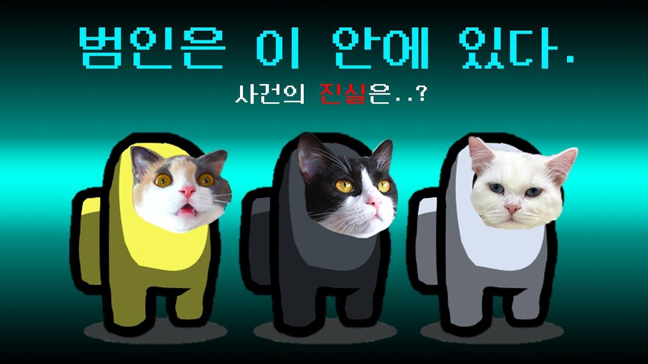 반전의 반전의 반전 드라마 | 고양이산책