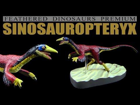 Colorata ® Sinosauropteryx - Feathered Dinosaurs Premium - Unboxing Teil 5