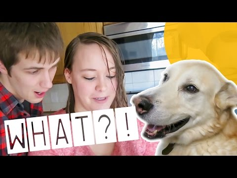 SERVICE DOG'S SHOCKING BREED RESULTS!