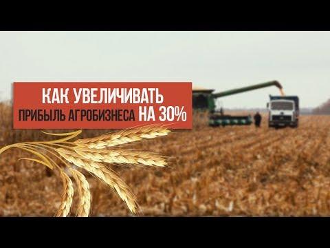 Как увеличить прибыль агробизнеса на 30%? Систематизация агробизнеса Украины.