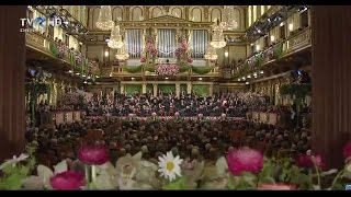 Vienna Philharmonic Orchestra - Dunărea Albastră (Johann Strauss-fiul)