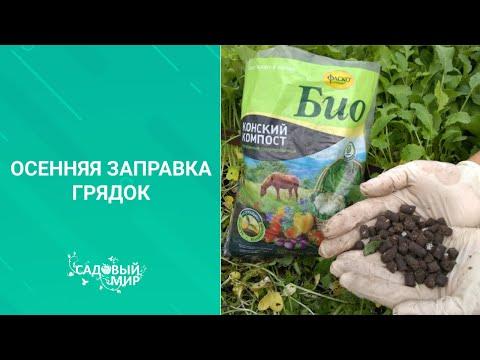 ГОТОВИМ ГРЯДКИ ОСЕНЬЮ К ЗИМЕ,  Как подготовить почву к следующему сезону после снятия урожая.