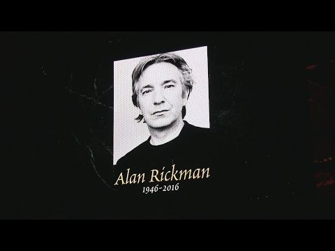 Potter cast remember Alan Rickman at A Celebration of Harry Potter