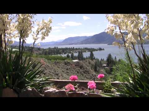 Vlog 8 - Journey to Wine Country, Paradise, and Babes