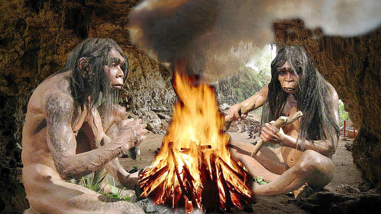 neanderthal and early modern humans essay