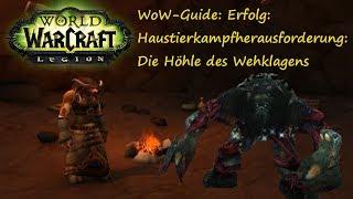 WoW-Guide: Erfolg: Haustierkampfherausforderung: Die Höhle des Wehklagens - Haustierdungeon