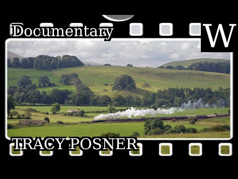 TRACY POSNER - WikiVidi Documentary
