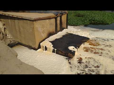 Vapi CETP : वापी सीईटीपी द्वारा दमण गंगा को प्रदूषित करना आज भी जारी।