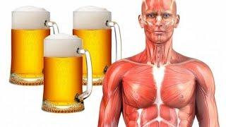 Schau was mit deinem Körper passiert, wenn du täglich Bier trinkst