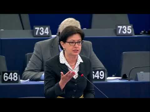 European Parliament called for the immediate release of Sen. Leila M. de Lima