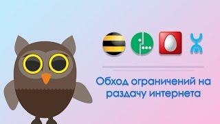 Обход ограничения раздачи интернета БИЛАЙН, МЕГАФОН, МТС, YOTA