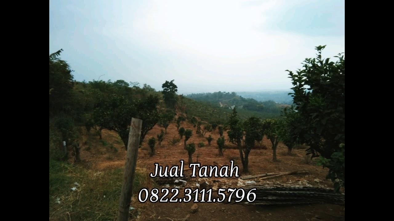 Di Jual Tanah Malang Kota - 0822.3111.5796 - YouTube
