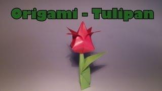 Origami - Tulipan